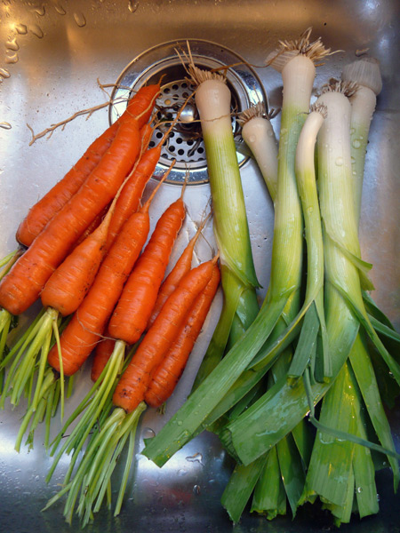 Carrots-and-leeks