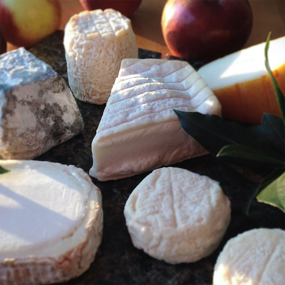 Six French Goat Cheeses
