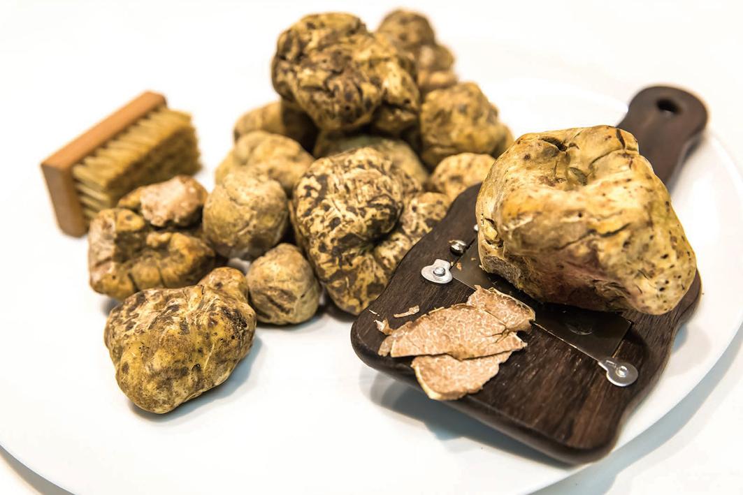White truffle – credit Mona Shield Payne