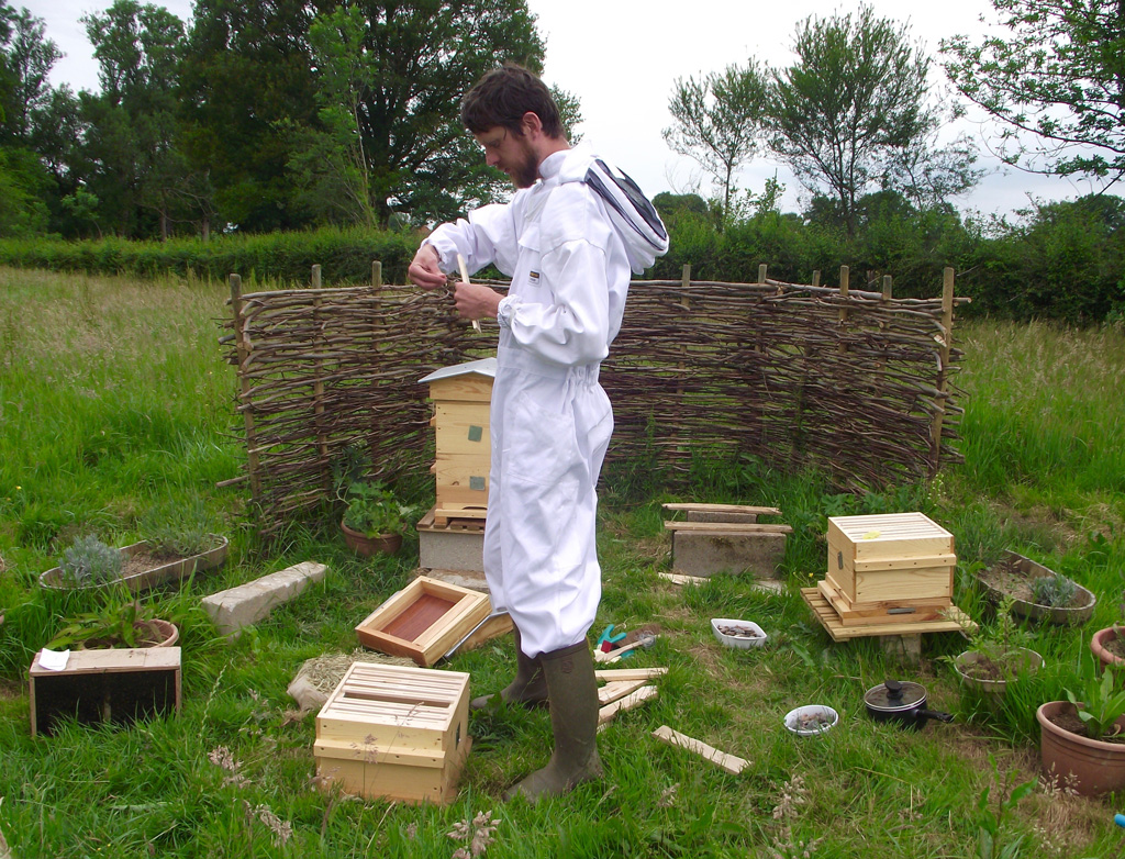 Natural beekeeping: Kieran Jefferson with his hives