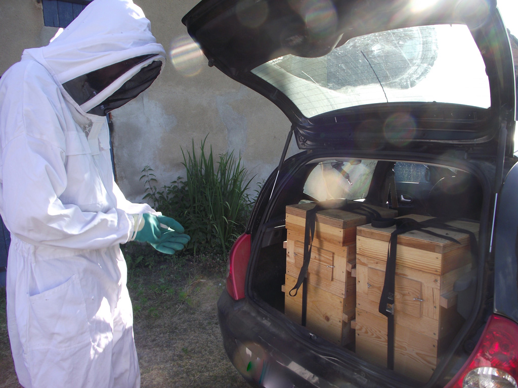 Kieran Jefferson with hives in the car's boot