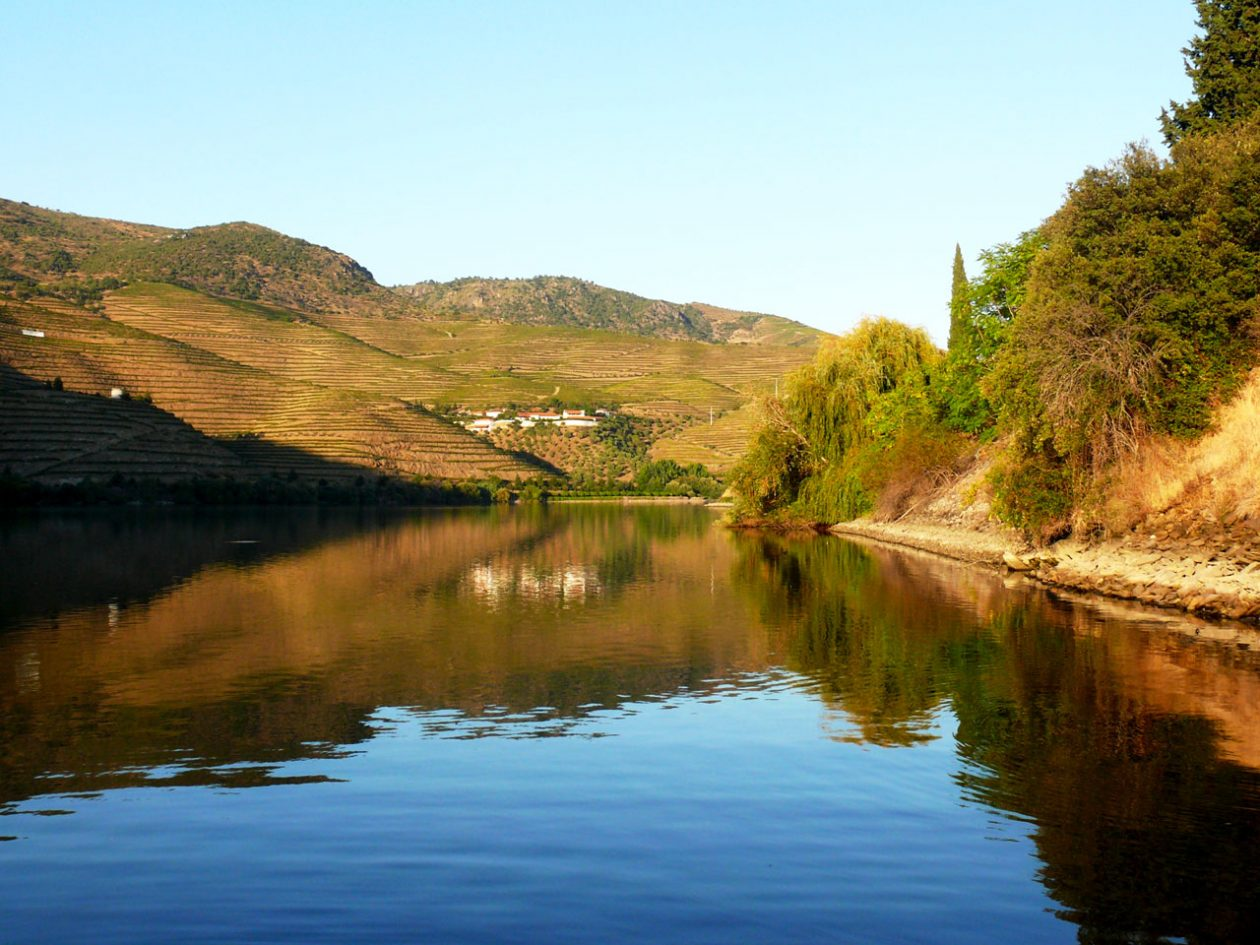 Evening on the Douro river