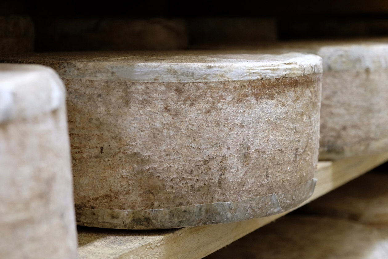 Cabot Clothbound Cheddar aging at Cellars at Jasper Hill