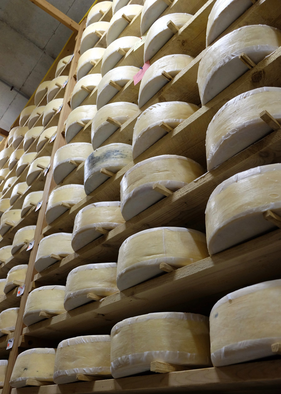 Cabot Clothbound Cheddar at Cellars at Jasper Hill