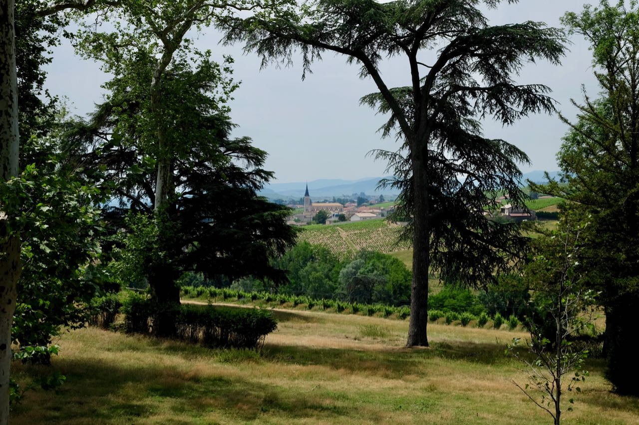The view of Fleurie from Château de Poncié