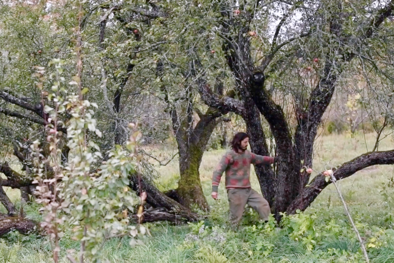 Christopher Piana with ancient apple trees at Fable Farm